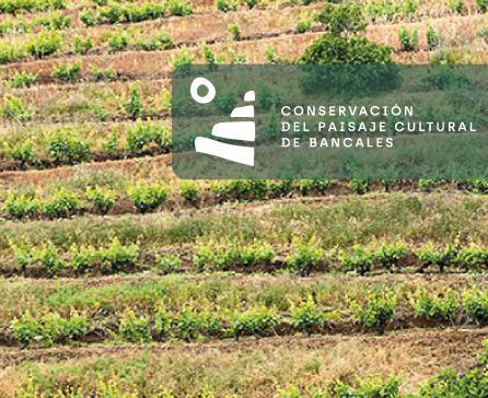 conservación del paisaje cultural de bancales